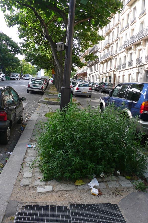 Paris plonge ... 3