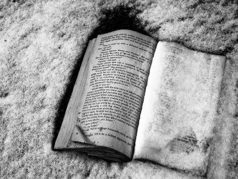 Coup de chaud pour Hidalgo : les bibliothécaires grelottent dans le XIIIème arrondissement !