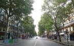 Stupidalgo est tombée par terre : c'est pourtant pas la faute au boulevard Voltaire !