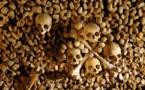 A Carnavalet on aime les champignons des catacombes !
