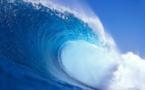 La France à la veille d'un raz-de-marée FN ? L'interview de Serge Federbusch par Atlantico